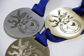 МЕДАЛИ из цельного металла и типовые медали