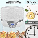 Сушилка для овощей и фруктов Gemlux, фото 2