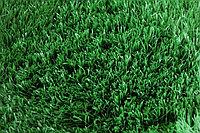 Искусственный газон 10мм.Dtex6300