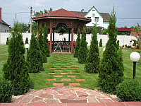 Озеленение территорий в Астане