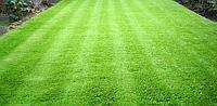 Строительство газонов в Астане