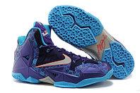 Баскетбольные кроссовки LeBron 11 (XI) Elite Deep Purple