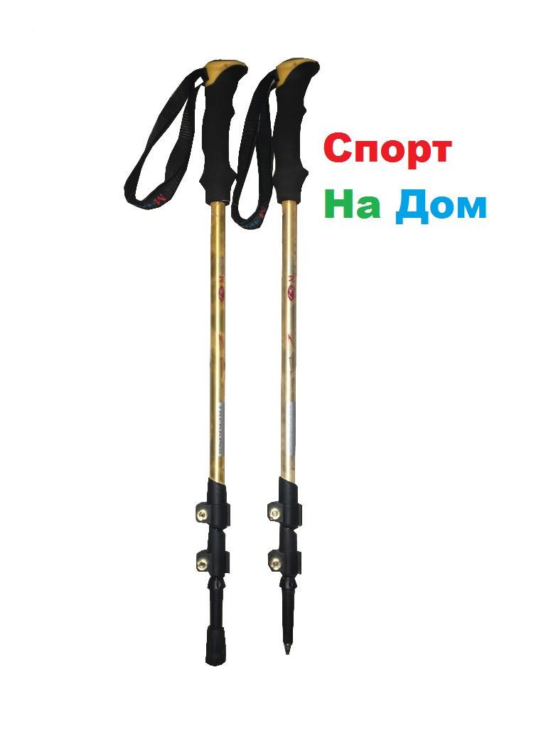 Палки для скандинавской ходьбы (Складные, длина 135 см)