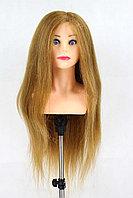 Голова-манекен с торсом русый волос натуральный (85%) - 70 см
