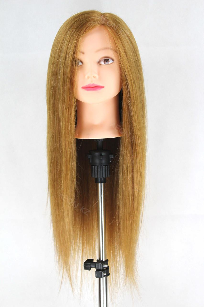 Голова-манекен русый волос натуральный животный - 60 см - фото 1