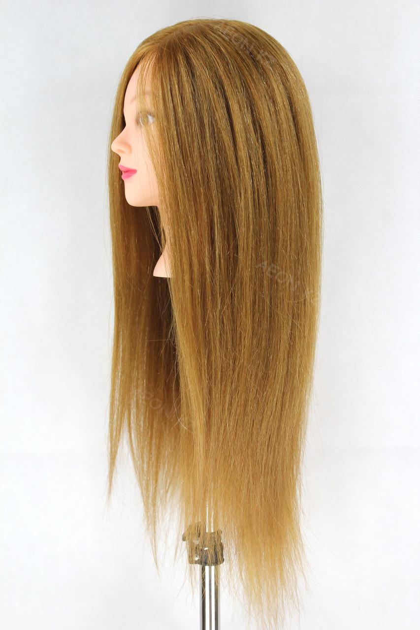 Голова-манекен русый волос натуральный животный - 60 см - фото 3