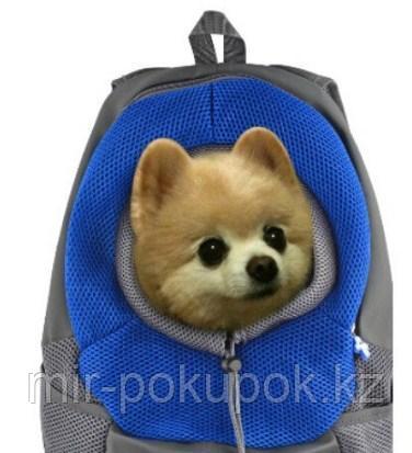 """Переноска-рюкзак """"Crazy Paws"""" для собак и кошек (дышащий рюкзак кенгуру)"""