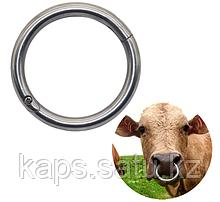 Носовое кольцо