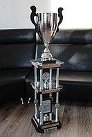 Чемпионский кубок, фото 1