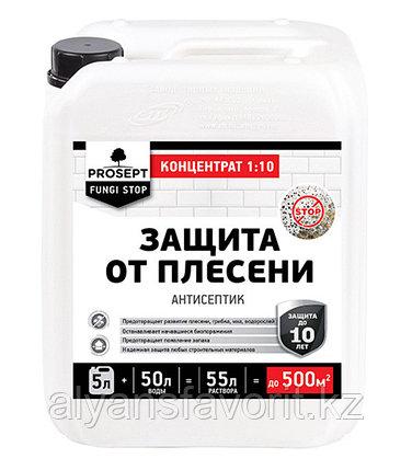 FUNGI STOP - защита от плесени концентрат. 5 литров. РФ, фото 2