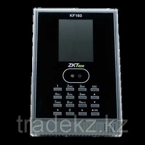 Гибридный биометрический терминал СКД учета рабочего времени ZKTeco KF160, фото 2