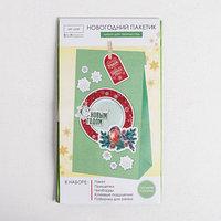Пакет подарочный 'Улыбка', набор для создания, 15.5 x 28.5 см