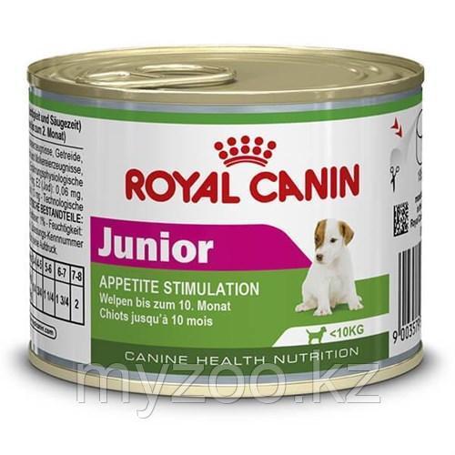 Паштет для щенков мини пород с 2-10 месяцев Royal canin MINI JUNIOR,195 gr.