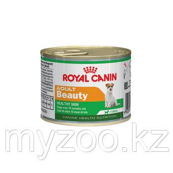 Паштет для взрослых собак мини пород Royal Canin MINI ADULT BEAUTY, 195 g