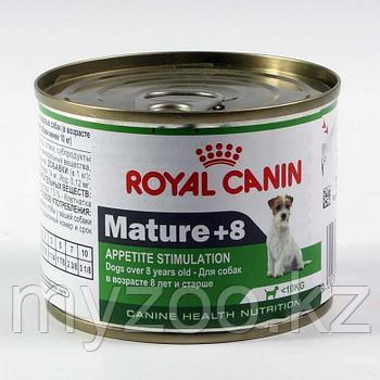 Влажный корм для стареющих собак мелких пород Royal Canin MINI MATURE +8,  195 g