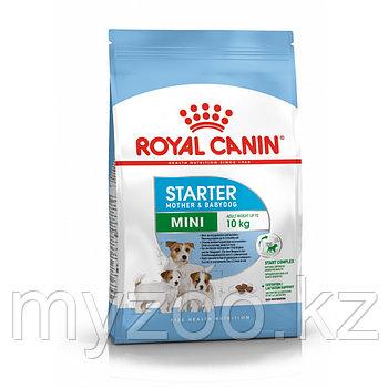 Royal Canin MINI STARTER M&B,16 kg. Корм для беременных собак и щенков мелких пород до 10 кг.