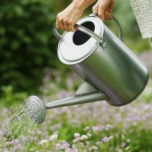 лейки для растений
