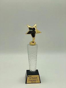 Наградной кубок «Звезда»