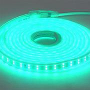 Светодиодная лента пылевлагозащищенная COLORADO 50M зеленый