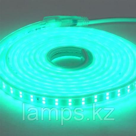 Светодиодная лента пылевлагозащищенная COLORADO 50M зеленый, фото 2