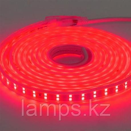 Светодиодная лента пылевлагозащищенная COLORADO 50M красный, фото 2