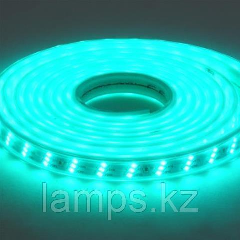 Светодиодная лента пылевлагозащищенная GANJ 50M зеленый