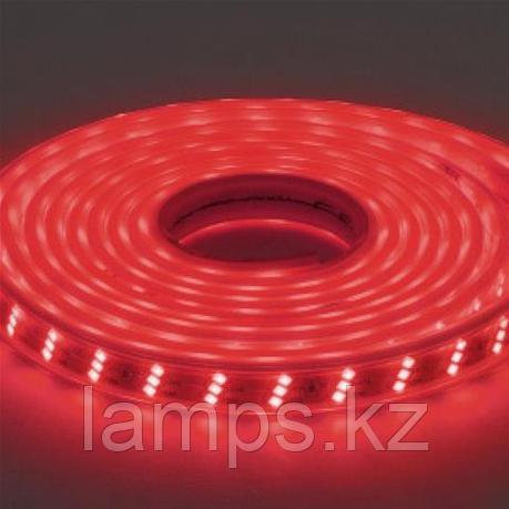 Светодиодная лента пылевлагозащищенная GANJ 50M красный, фото 2