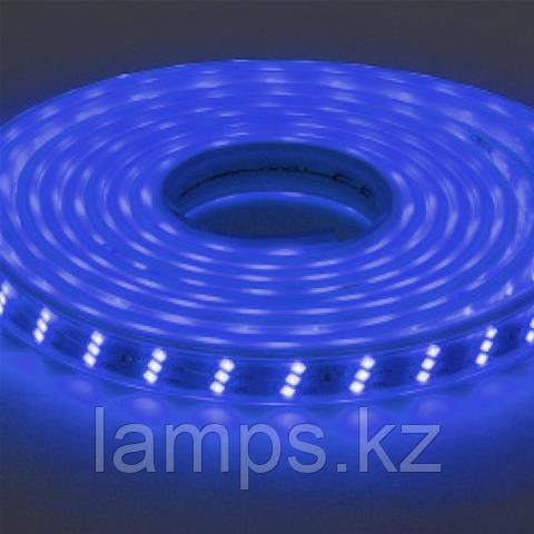 Светодиодная лента пылевлагозащищенная GANJ 50M синий