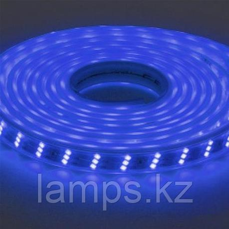 Светодиодная лента пылевлагозащищенная GANJ 50M синий, фото 2