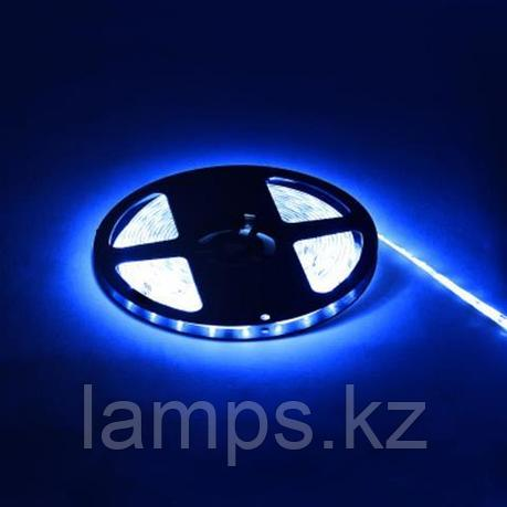 Светодиодная лента пылевлагозащищенная REN 5M синий, фото 2