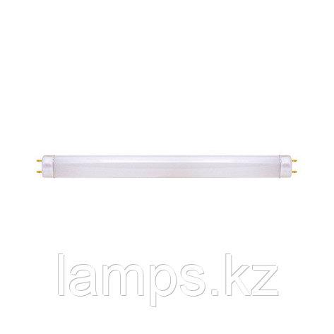 Энергосберегающая линейная лампа TUBE-8 18W 6400K, фото 2