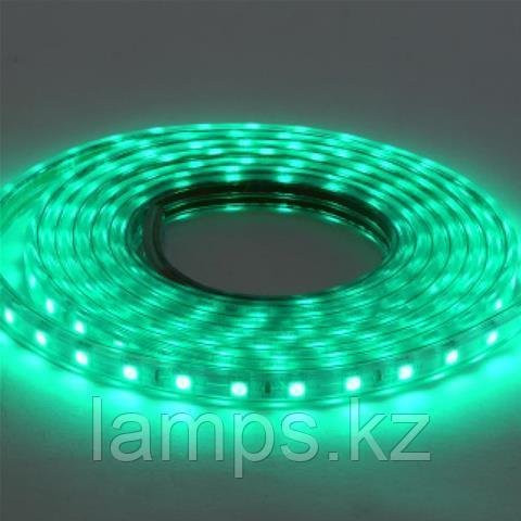 Светодиодная лента пылевлагозащищенная VOLGA 50M зеленый