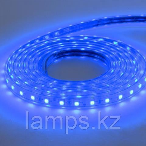 Светодиодная лента пылевлагозащищенная VOLGA 50M синий