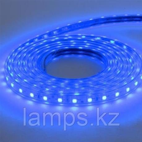 Светодиодная лента пылевлагозащищенная VOLGA 50M синий, фото 2
