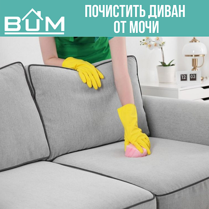Почистить диван от мочи