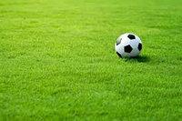 Искусственная трава Italgreen