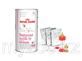 Смесь молока для котят с рождения Royal Canin BABYCAT MILK (Молоко), 300 g