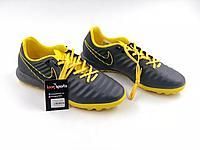 Сороконожки Nike Tiempo X