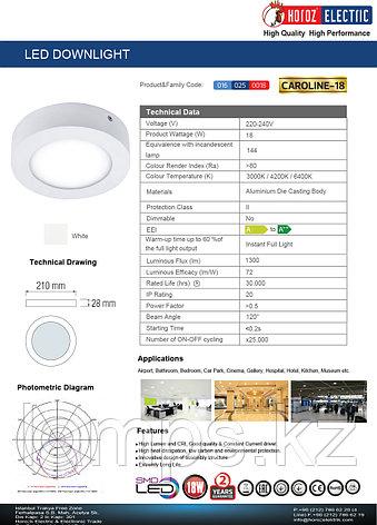 Панель светодиодная накладная круглая CAROLINE-18 18W белый 6000K , фото 2