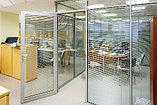 Перегородки из стекла для офисов и дома, фото 2