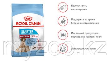 Royal Canin MEDIUM STARTER M&B 4 kg Корм для беременных собак средних пород от 10 до 25 кг