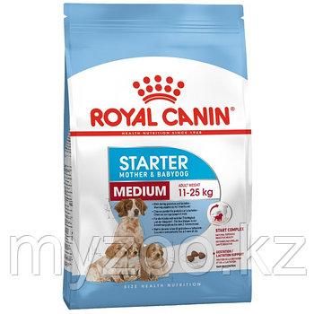 Royal Canin MEDIUM STARTER M&B 12 kg Корм для беременных и кормящих собак средних пород от 11-25 кг