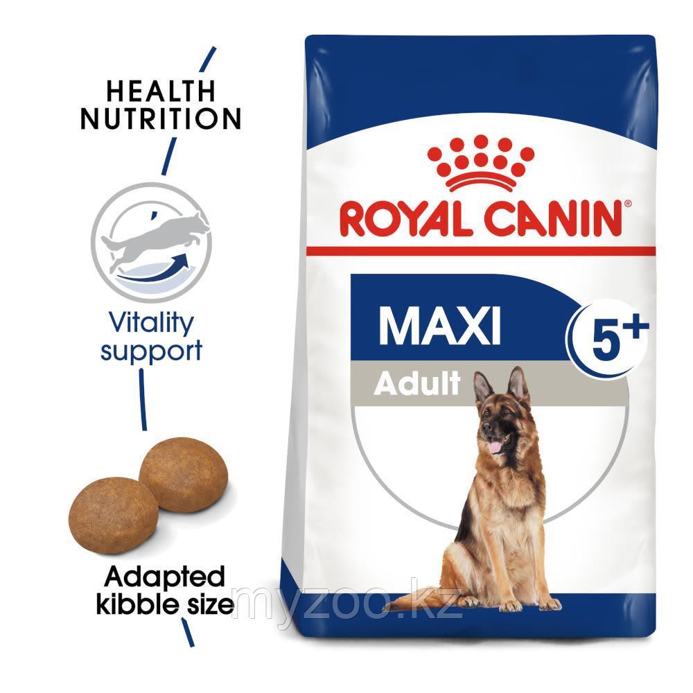 Корм для собак крупных пород старше 5 лет Royal Canin MAXI ADULT 5+15 kg.