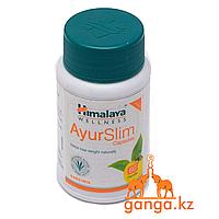 """""""Аюрслим"""" от компании «Гималаи», 60 капсул (AyurSlim Himalaya) Для похудения"""