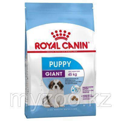 Royal Canin GIANT PUPPY PRO 17 kg. Корм для щенков гигантских пород