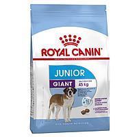 Корм для молодых собак гигантских пород Royal Canin GIANT JUNIOR 15 kg.