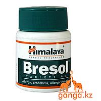 Бризоль (Bresol HIMALAYA), 60 таб. При заболевании дыхательных путей
