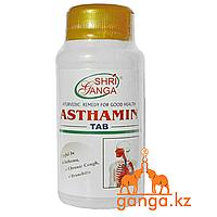 Астамин Здоровье и Очищение Легких (Asthamin SHRI GANGA), 100 таб.