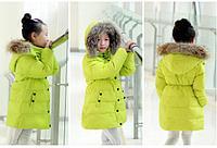 Куртки осень / зима