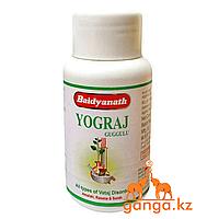 Йоградж Гуггул для Улучшения работы суставов (Yograj Guggulu BAIDYANATH), 120 таб.